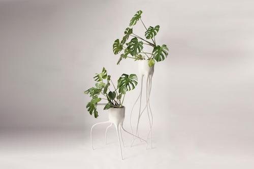root pot 4