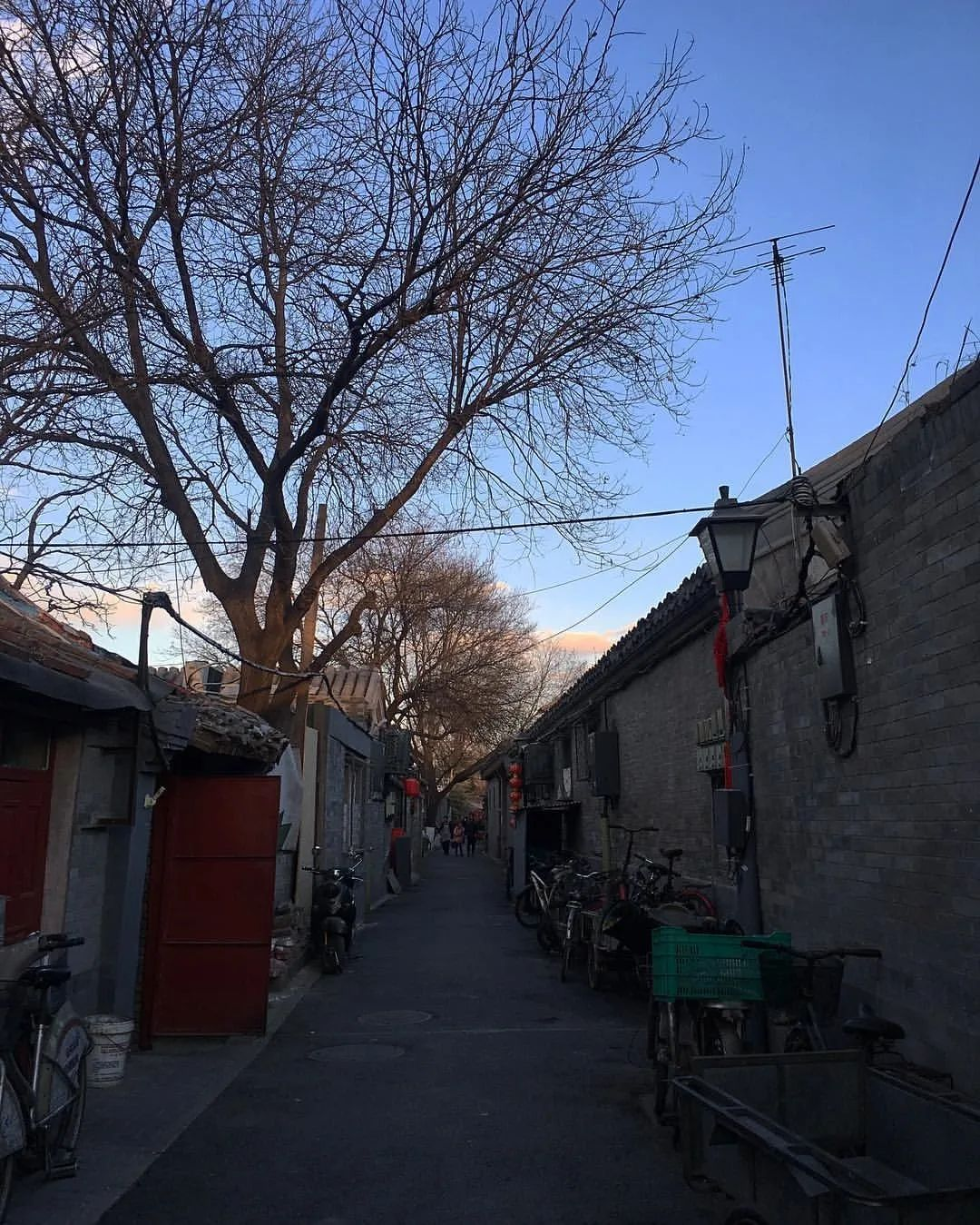 中国第一人!从学渣到手艺届奥斯卡得主,北京女孩打破日本30年垄断,惊艳全世界…